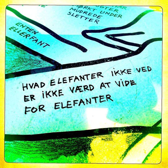elefantviden