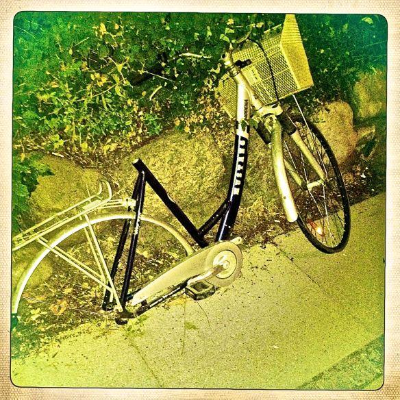 huncykel